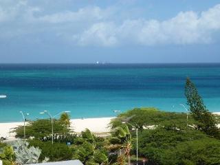 Luxurious Modern 1 Bedroom Beach Condo - Palm/Eagle Beach vacation rentals