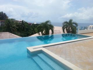F2 vue Panoramique vue mer montagne piscine - Le Carbet vacation rentals