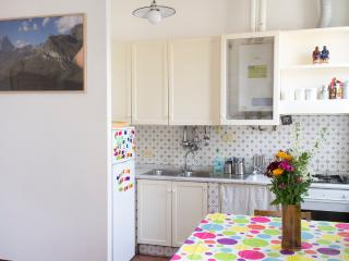 Nice, cozy and bohemien apt in building from '900 - Milan vacation rentals