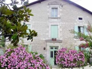 les HORTENSIAS du Périgord dans maison du XVIII - Allemans vacation rentals