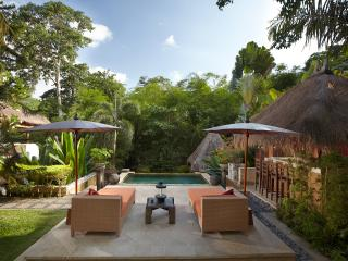 Villa Red Palms River Retreat near Seminyak Bali - Kerobokan vacation rentals