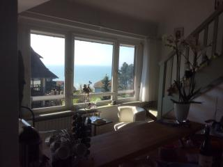 2 bedroom Condo with Internet Access in Benerville-sur-Mer - Benerville-sur-Mer vacation rentals