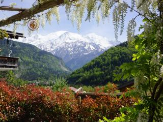 Peaceful & Picturesque Retreat in Chamonix valley - Chamonix vacation rentals