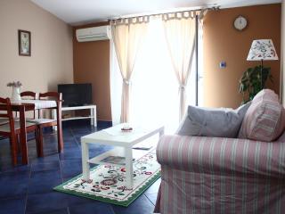 1 bedroom Condo with Internet Access in Sibenik - Sibenik vacation rentals
