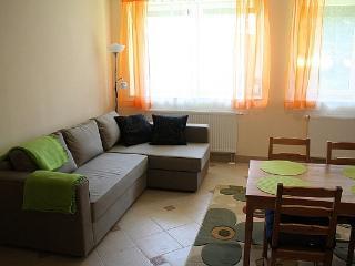 Comfortable 1 bedroom Condo in Koscielisko - Koscielisko vacation rentals