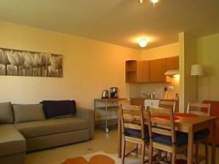 Perfect 1 bedroom Koscielisko Apartment with Internet Access - Koscielisko vacation rentals