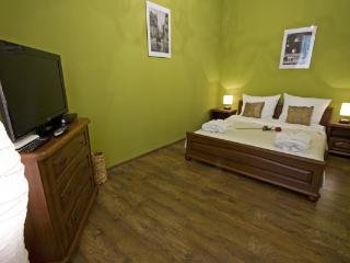 Hennessy Apartment - Krakow vacation rentals