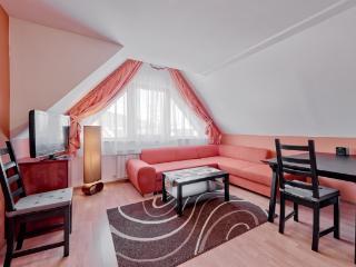 Delta Premium Apartment - Zakopane vacation rentals
