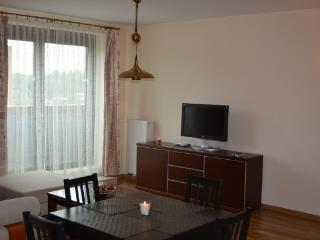 Metaxa Apartment - Krakow vacation rentals
