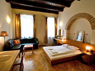 Perfect 1 bedroom Condo in Krakow with Internet Access - Krakow vacation rentals