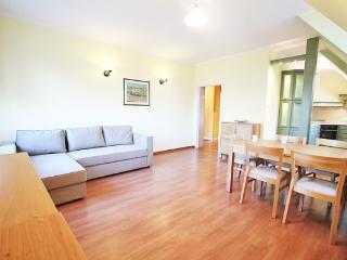 Bright Warsaw Apartment rental with Internet Access - Warsaw vacation rentals
