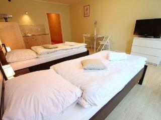 1 bedroom Apartment with Internet Access in Poznan - Poznan vacation rentals