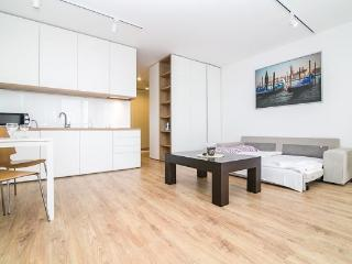 Bright Poznan Apartment rental with Internet Access - Poznan vacation rentals