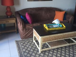 Gorgeous Condo with Internet Access and Alarm Clock - Saint Thomas vacation rentals