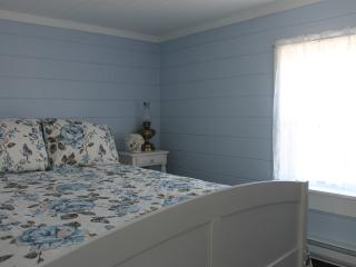 Cozy House with Deck and Internet Access - Bonavista vacation rentals