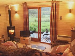 Perfect Machynlleth Lodge rental with Television - Machynlleth vacation rentals