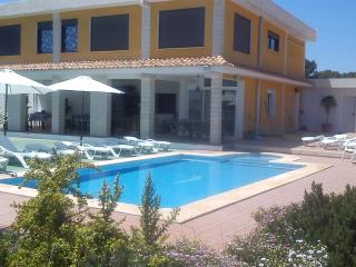Beautiful spacious private Villa in Alicante - Sant Vicent del Raspeig vacation rentals
