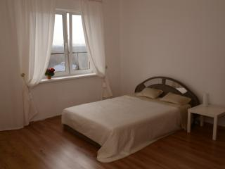 Apartments on the roof - Saint Petersburg vacation rentals