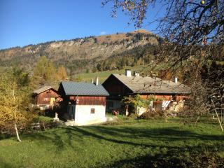 Le hameau de Chantemerle 21-23 p. en pleine nature - Samoëns vacation rentals