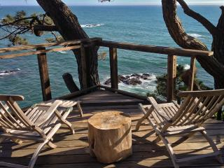 Cabin 5 on the Bluff - Gualala vacation rentals