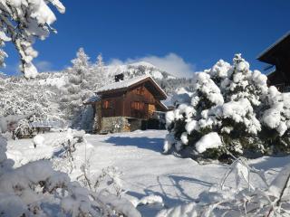 Charmante maison de montagne 4-5 p. pleine nature - Samoëns vacation rentals