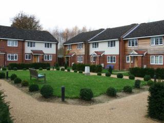 Epsom house - Epsom vacation rentals