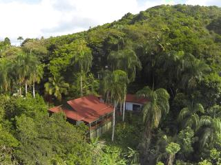Gorgeous Bed and Breakfast with Internet Access and Balcony - Saint Thomas vacation rentals