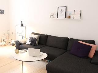 Nice Copenhagen apartment in the heart of Vesterbro - Copenhagen vacation rentals