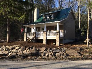 Bear Den Cottage along Penns Creek newly renovated - Mifflinburg vacation rentals