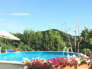 Villa Mary at 20mn from Florence pool & BBQ - Tavarnuzze vacation rentals