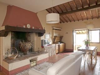 Country Hause Nazzano - Il Pettirosso - Gambassi Terme vacation rentals