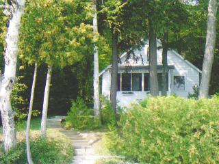 Nice 2 bedroom Walloon Lake Cottage with Deck - Walloon Lake vacation rentals