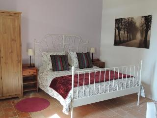4 bedroom B&B with Internet Access in Saint Nicolas de Bourgueil - Saint Nicolas de Bourgueil vacation rentals