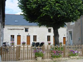 Nice Bed and Breakfast with Internet Access and Wireless Internet - Saint Nicolas de Bourgueil vacation rentals