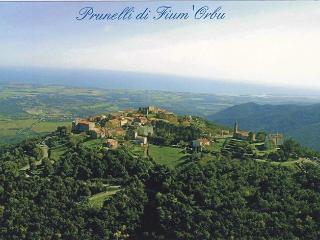 maison neuve de 70M2 à Prunelli di Fium'ORBU - Prunelli-di-Fiumorbo vacation rentals
