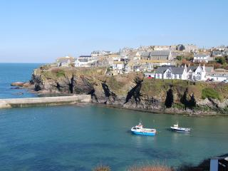 2 bedroom Cottage with Kettle in Port Isaac - Port Isaac vacation rentals