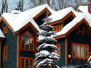 38, Chemin des Skieurs - Stoneham vacation rentals