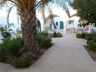 Riad mix of modern and Tunisian decoration - Erriadh vacation rentals
