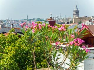 İstanbul Amedros terrace suites - Istanbul Province vacation rentals