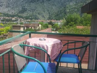 Apartments witha view old town Kotor - Kotor vacation rentals