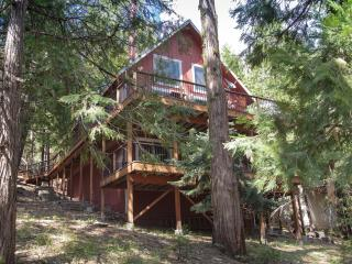 Nick's Cabin-luxury near Dodge Ridge & Yosemite - Cold Springs vacation rentals