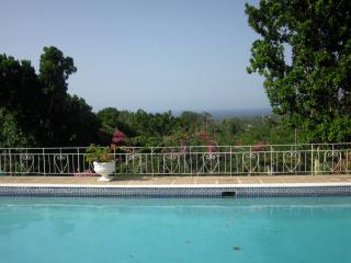 Quaint cottage located in the hills of Jamaica's - Oracabessa vacation rentals