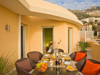 Bright 2 bedroom Condo in Beausoleil - Beausoleil vacation rentals