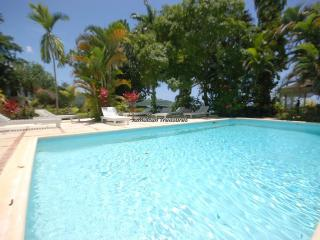 Gorgeous House with Television and DVD Player - Montego Bay vacation rentals
