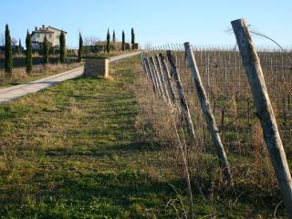 Casa Marna-Tenuta Recchi Franceschini - Montalto delle Marche vacation rentals