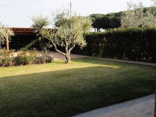 Casa degli olivi - Pescia Romana vacation rentals