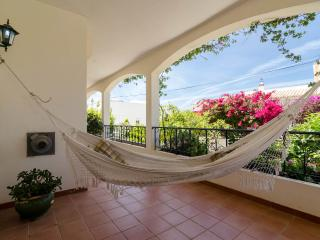 Villa do Vale House (4186/AL) - Portimão vacation rentals