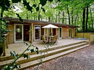 Huccaby Lodge, 3 Indio Lake located in Bovey Tracey, Devon - Bovey Tracey vacation rentals