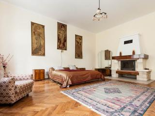 Chain Bridge beauty with fireplace - Budapest vacation rentals