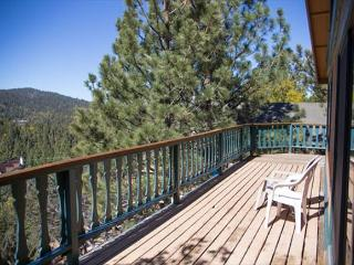 DISCOUNTED! SKI  VIIEWS!  TREE ViEWS  w/  NICE  HOT TUB! - Big Bear Lake vacation rentals